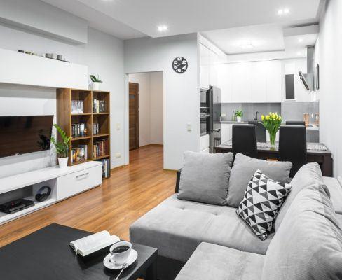 Small flat with sleeper sofa
