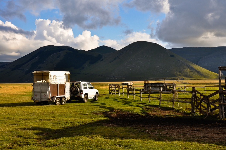 Horse trailer parked with a mountain view